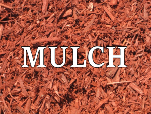 mulch in Australia